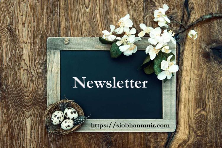 Have you signed up for my Newsletter? It's easy and you don't have to depend on any spec